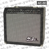 AE-30 Professional Guitar Amplifier