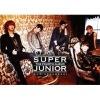 K-pop, Korean Music CD SUPER JUNIOR - VOL.4 TYPE A