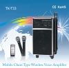 Speaker ,Amplifier/pa system with USB(TK-T33)