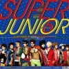 Super Junior 5st Mr.Simple Wholekorea K.Y.C